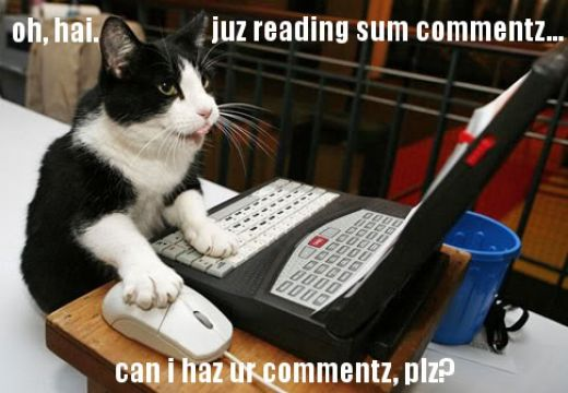 lolcat-reading-blog-comments