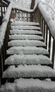 snow 2012 feb VanFossen home forest (3)