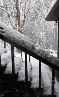 snow 2012 feb VanFossen home forest (4)