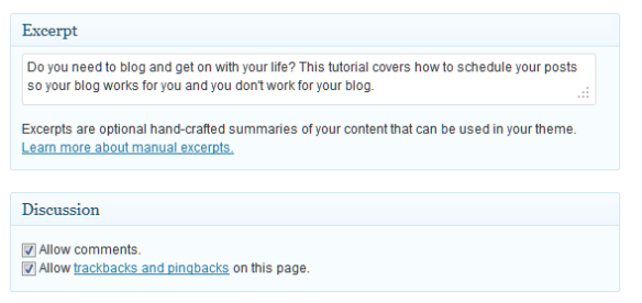 WordPress Custom Excerpt shown on post panel.