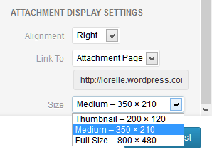 WordPress Media Uploader example of choosing the image size for displaying in the post or Page.
