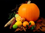 pumpkin fall fruits and vegetables